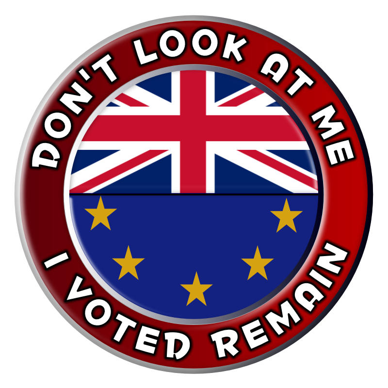 Don't Look at Me. I Voted Remain.